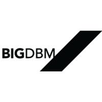 BIGDBM-logo